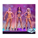 wbff-pro-fitness-model Thumbnail